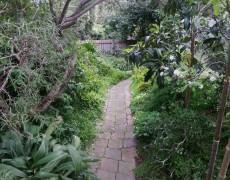 Rosanna Garden