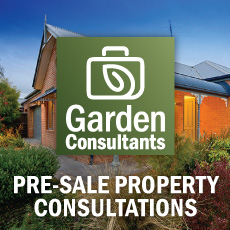 Pre-Sale Property Consultations